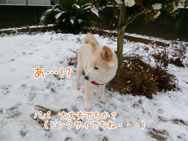 20130120_4.jpg