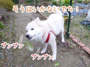20130125_5.jpg