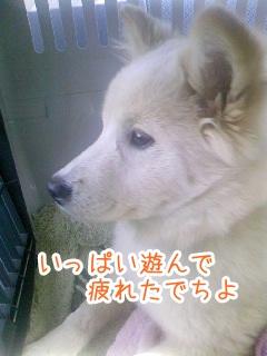 20130127_7.jpg