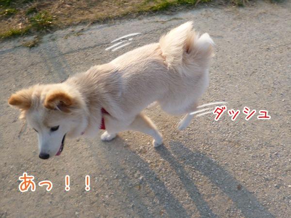 20130309_8.jpg