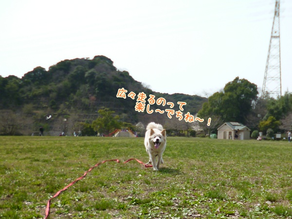 20130317_6.jpg