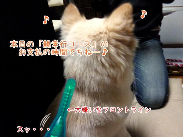 20130322_10.jpg