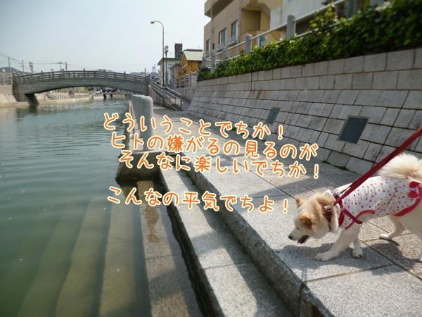 20130331_5.jpg
