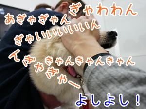 20130425_5.jpg