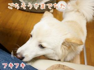 20130429_10.jpg