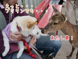 20130510_17.jpg