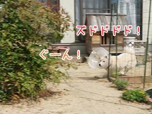 20130530_4.jpg