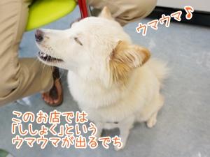 20130707_3.jpg