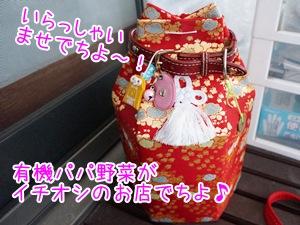 20130710_1.jpg
