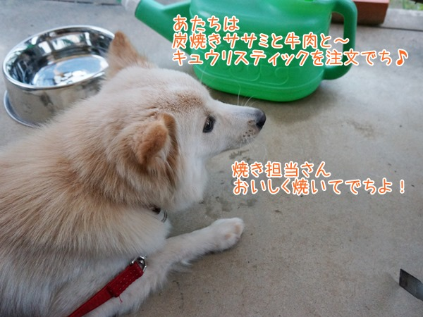 20130710_4.jpg