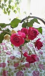 sテーブル花