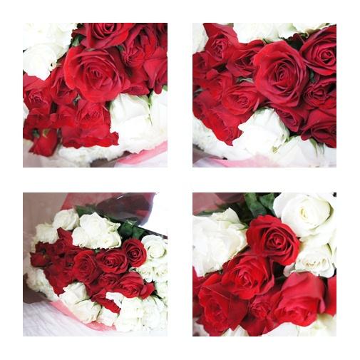 DSCN07217_20120223204053.jpg