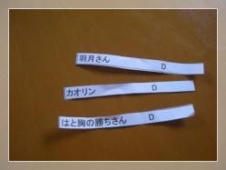 DSCN6023_20110708212737.jpg