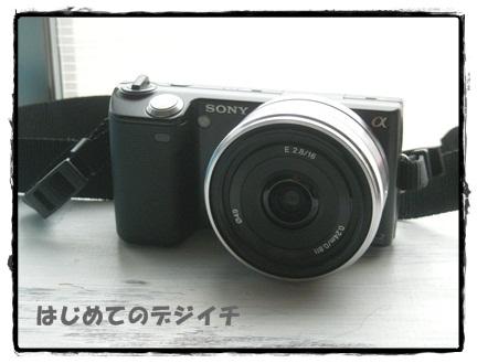 DSCN7020_20110811212952.jpg