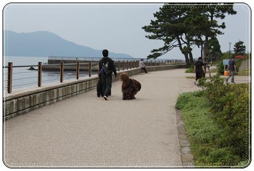 2011_0616tabasa0747.jpg