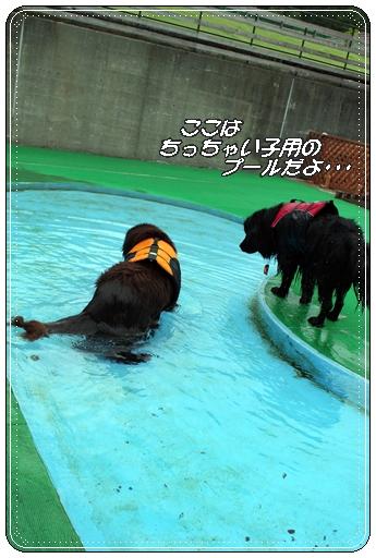 2011_0616tabasa0815.jpg