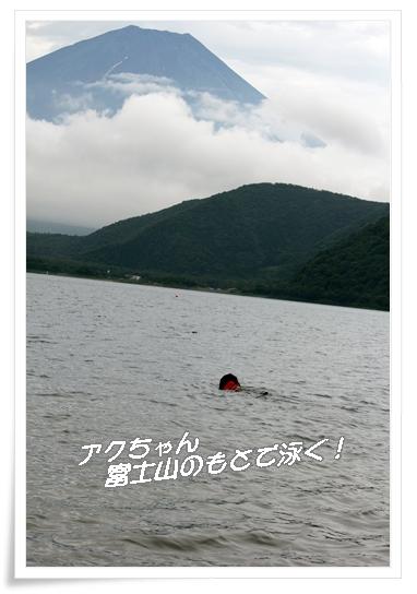2011_07263sai0607.jpg