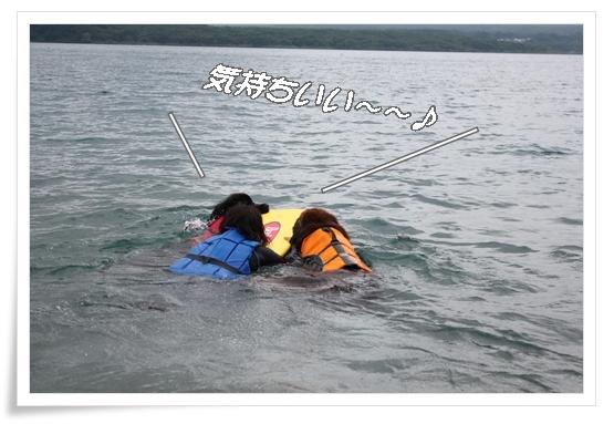 2011_07263sai0744.jpg