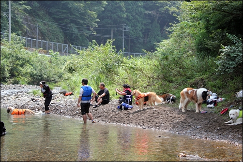 2011_0817kawaasobi0247.jpg