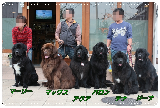 2011_1029sumabaron0020.jpg