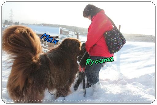 2011_1223yukiasbi12230040.jpg