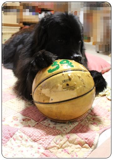 2012_0130wagasi0041.jpg