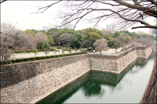 2012_0308oosakajo-ume0018.jpg