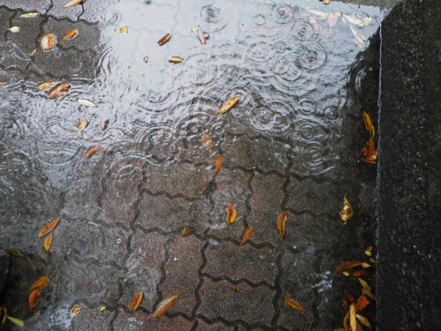 RainyTime124.jpg