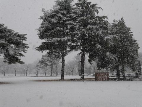 20141205初雪