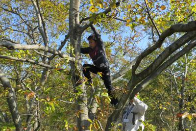 木登り_4653