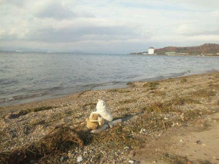 海辺のまるとあらきちDSC_0024