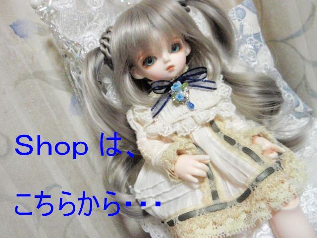 shop 5/24