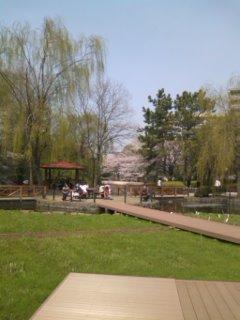 親水公園1