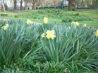 london-spring 7