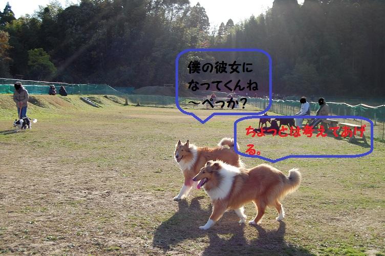 suirann33.jpg