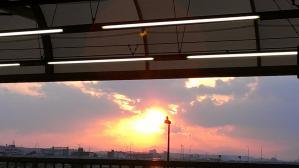 二子玉川の夕陽