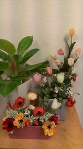 サロンの花 4月