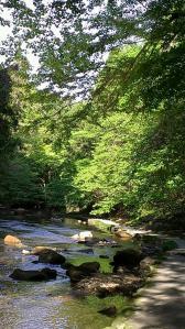 栗又の滝へ 滝巡り2-1