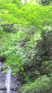 栗又の滝へ 滝巡り6-1