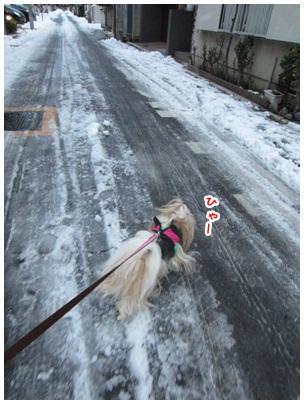 2013-01-17-03.jpg