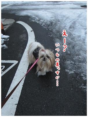 2013-01-18-04.jpg