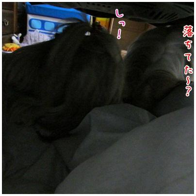 2013-01-23-02.jpg