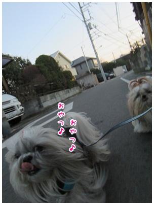 2013-01-25-01.jpg