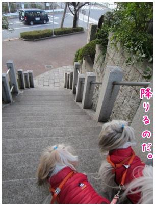 2013-03-16-09.jpg