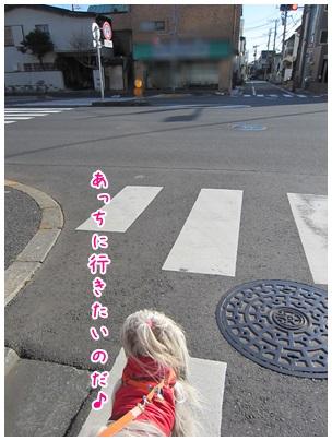 2013-03-26-01.jpg