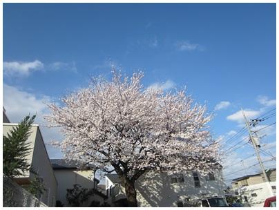 2013-03-26-04.jpg