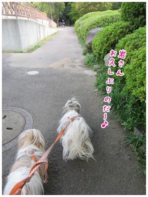 2013-04-09-02.jpg