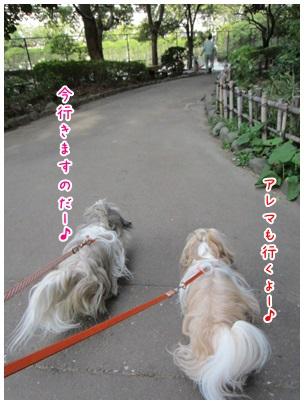 2013-04-09-07.jpg