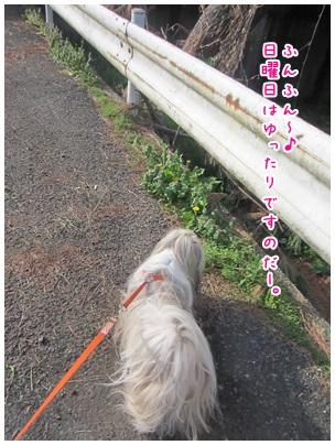 2013-04-14-01.jpg