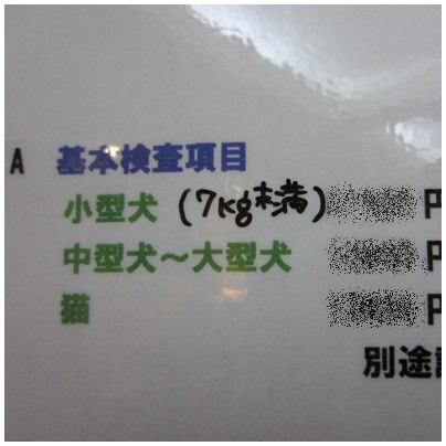 2013-04-21-09.jpg